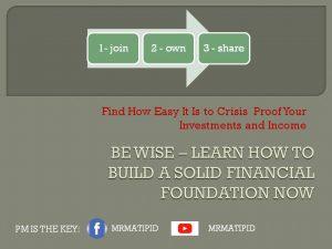 wise investor